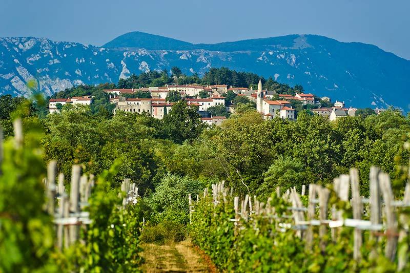 Slovenia Karst